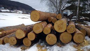 Frist for tilskudd og skogfond er 4. desember