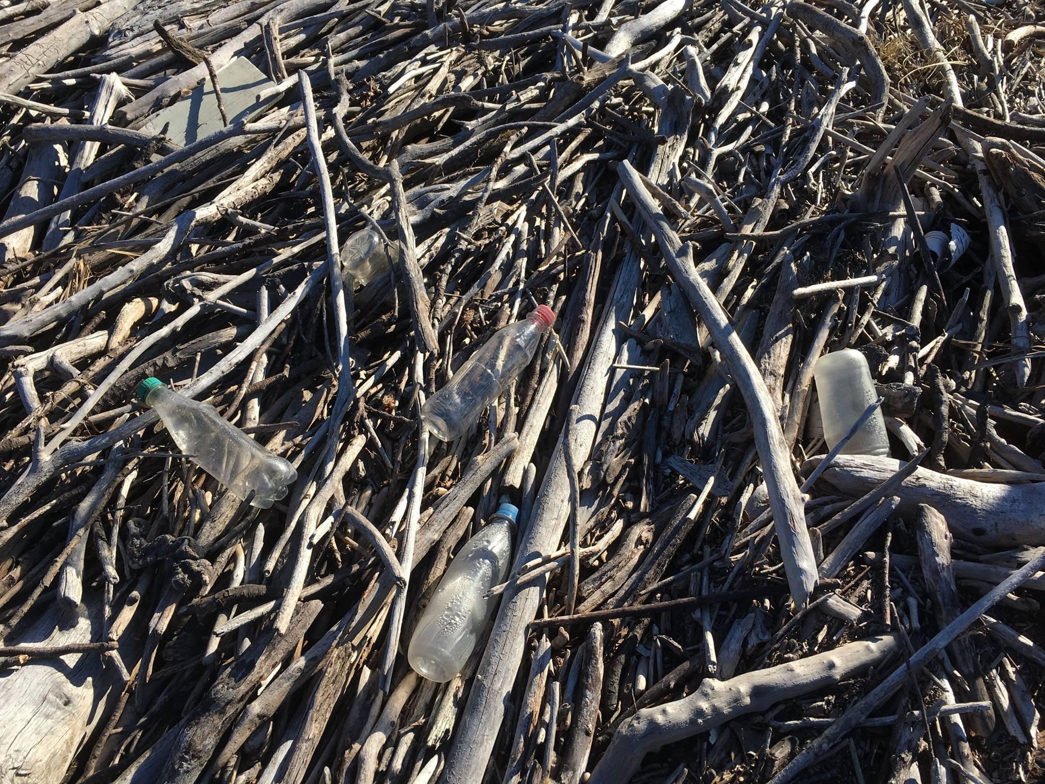 plastflasker, søppel