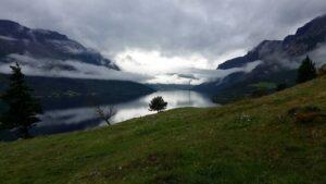 Kartlegging av naturtyper i Innlandet 2021